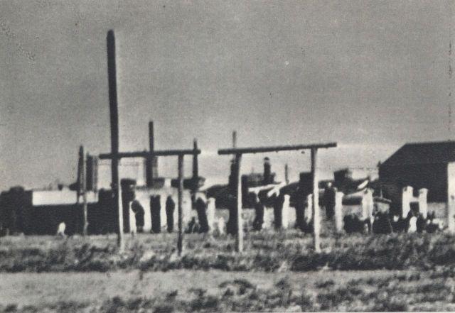 Zdjęcie powieszonych na szubienicach przy Mszczonowskiej.