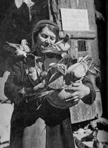 kazimiera-majchrzak